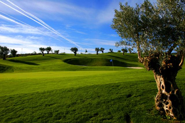cerrado_aguila_golf_2